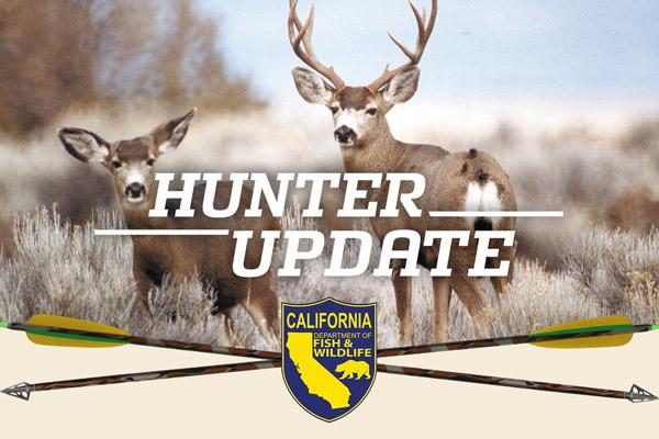 Hunter Update