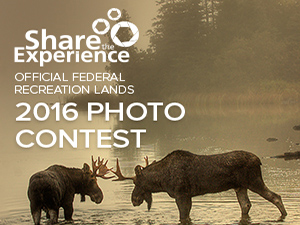 Share the Experience Photo Contest Banner